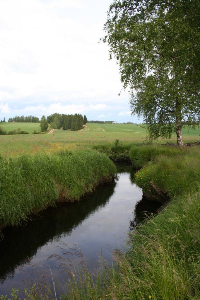 Kauhajoki virtaa kapeana Hyypänjokilaakson pohjalla