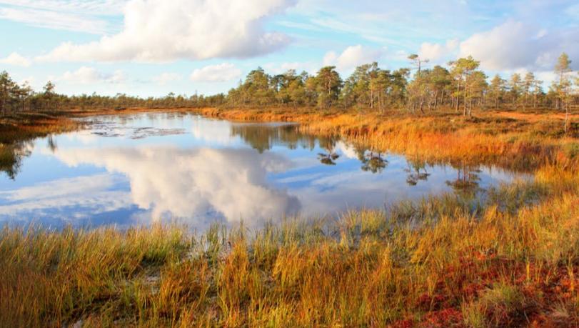 Syysmaisema, jossa näkyy ruskan värit. Kuva on Lauhanvuori-Hämeenkangas Geoparkista.